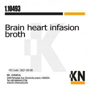 brain heart infasion broth